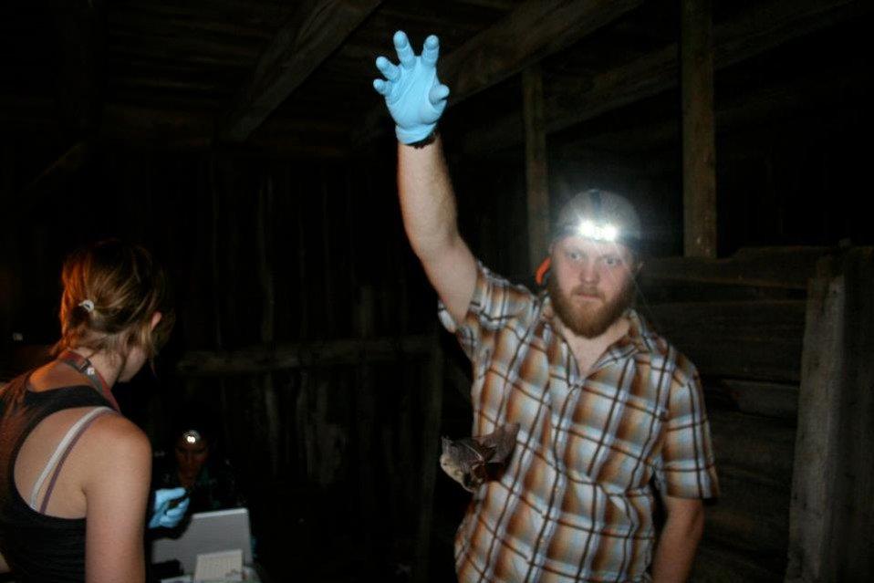 BU researcher Nate Fuller releases bat