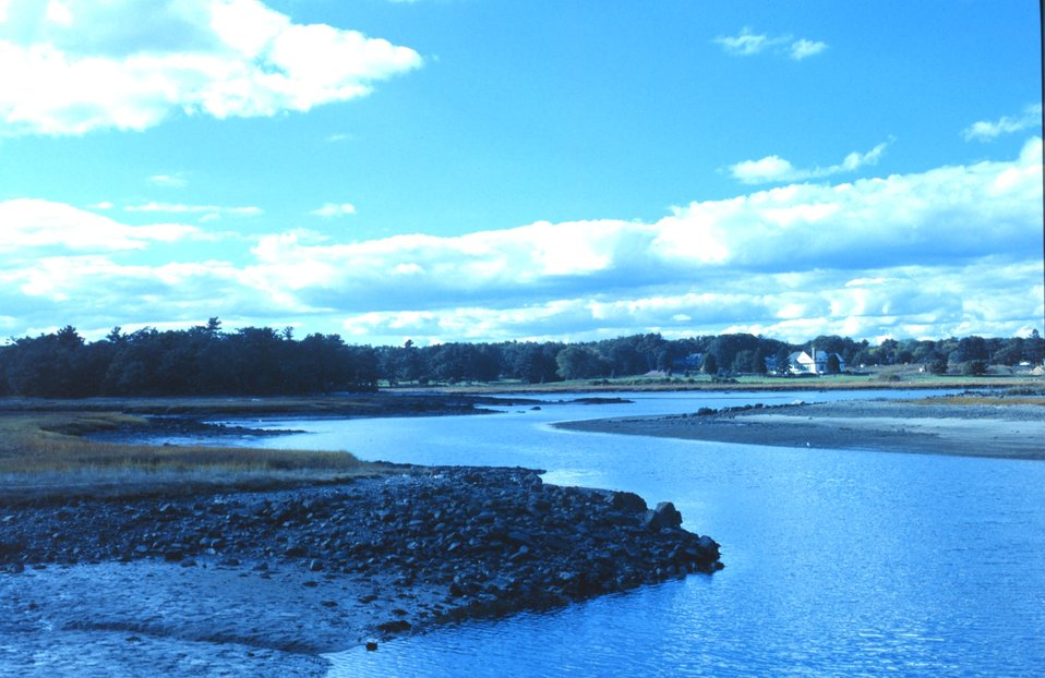 Part of the tidal stream pattern at Great Bay National Estuarine Research Reserve.