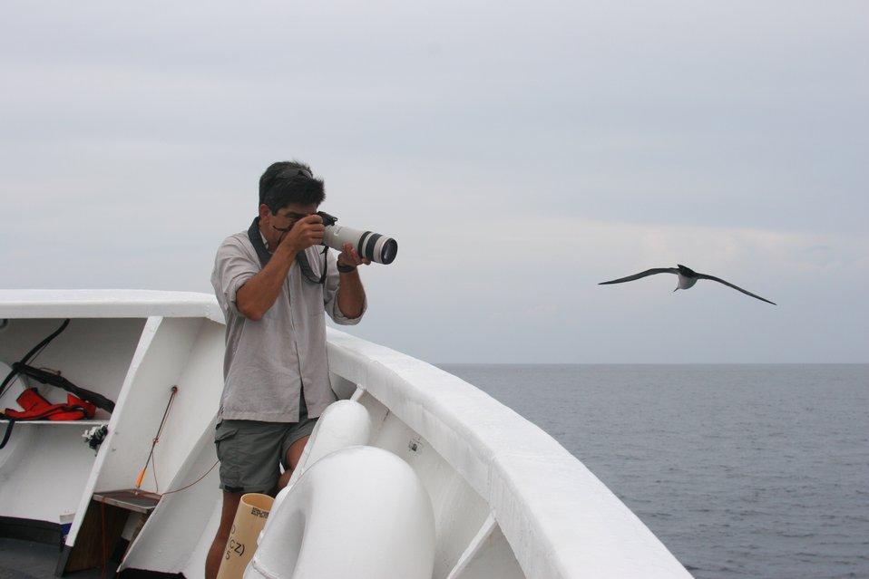 Photographer and bird go eye-to-eye on the NOAA Ship DAVID STARR JORDAN.