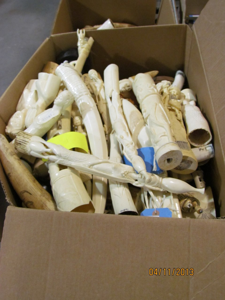Box of small ivory pieces and tusks