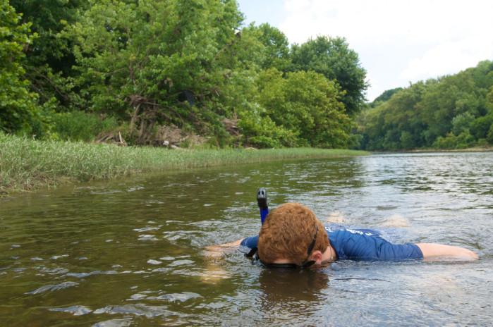 Potomac snorkeler