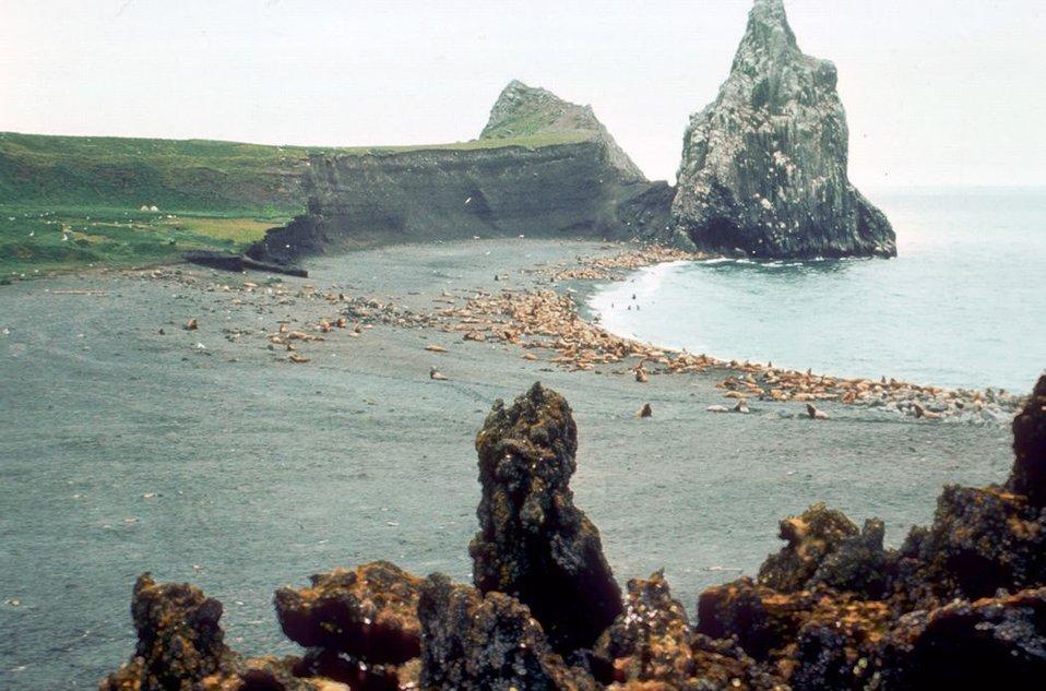 Alaska Maritime Refuge