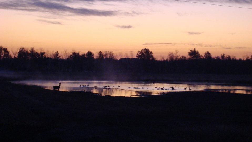 sunset at Cypress Creek NWR