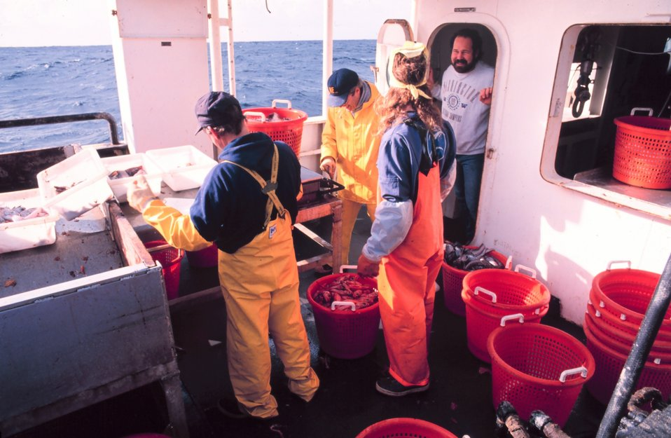 Sorting catch on MILLER FREEMAN