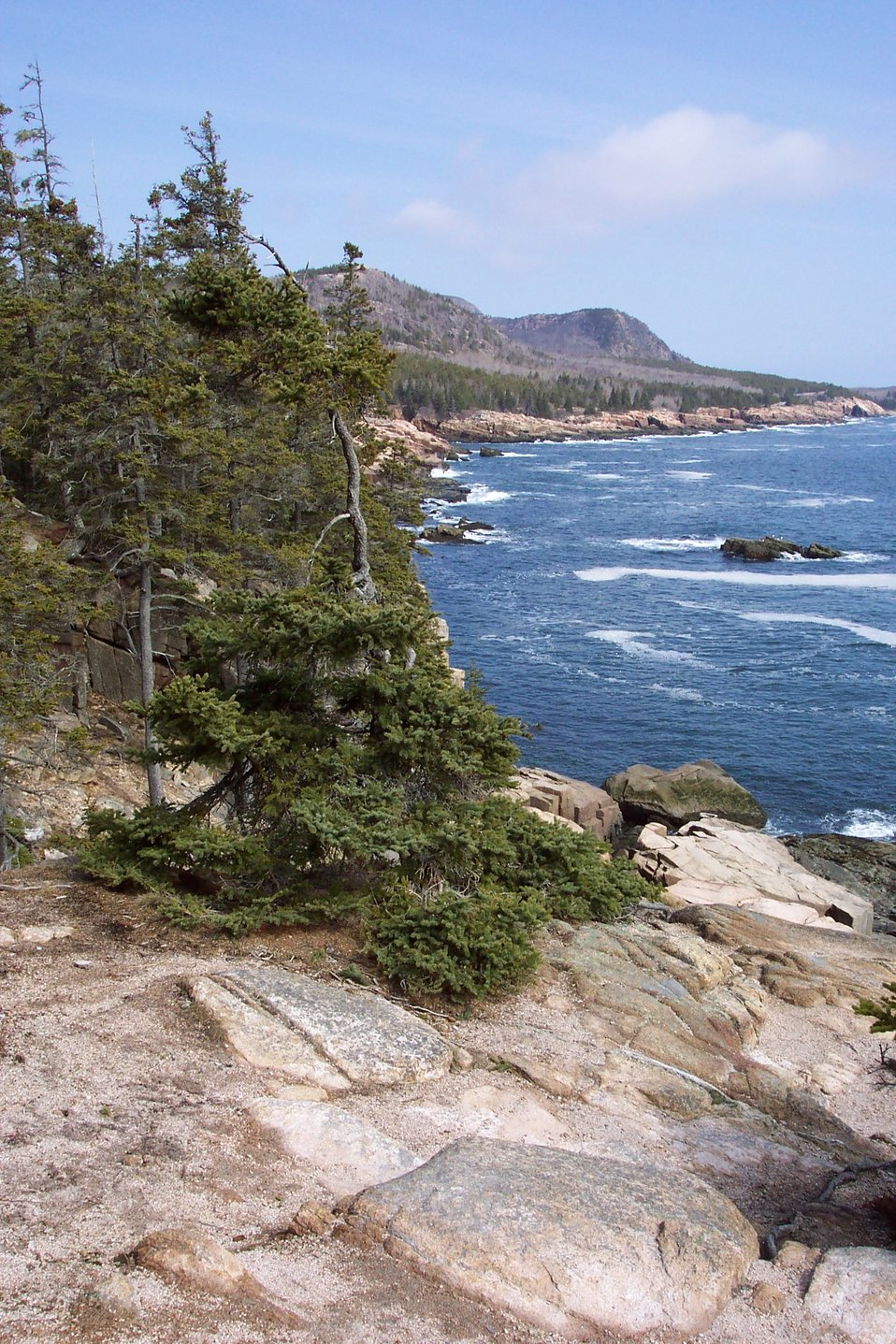 Looking north from the Otter Cliffs.