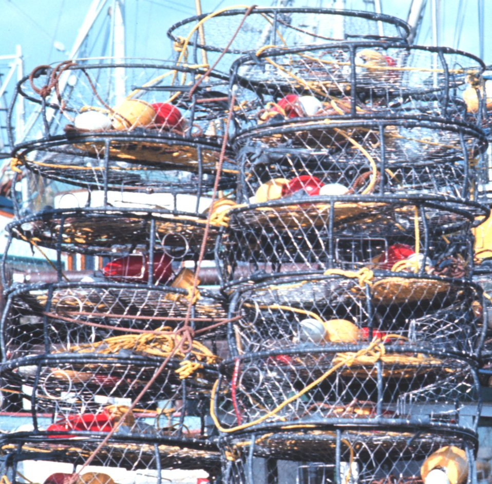 Crab traps on the dock.