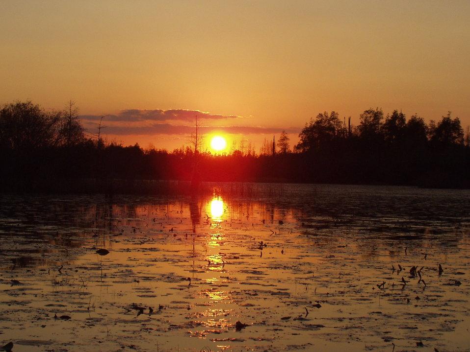 Okefenokee Sunset3