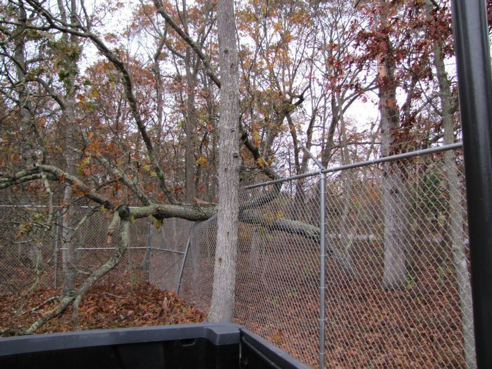 Hurricane damage at Long Island National Wildlife Refuge Complex (NY)