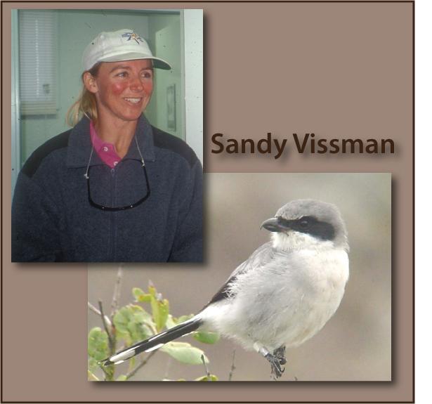Recovery Champion Sandy Vissman and a San Clemente Loggerhead shrike