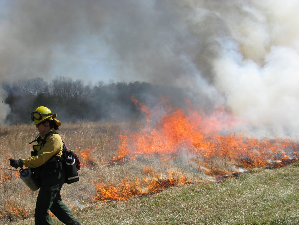 TNC Firefighter at Patuxent Research Refuge