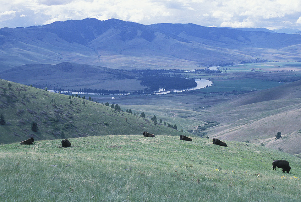 National Bison Range scenic