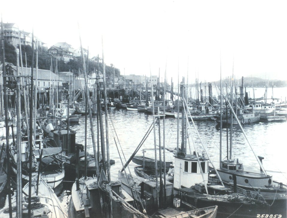 The fishing fleet at Ketchikan.  Ketchikan was then the greatest fishing center on the Pacific Coast.  Fishing in Alaska then accounted for 80 percent of all employment with most activity limited to the summer months.  F&WS C-1191.