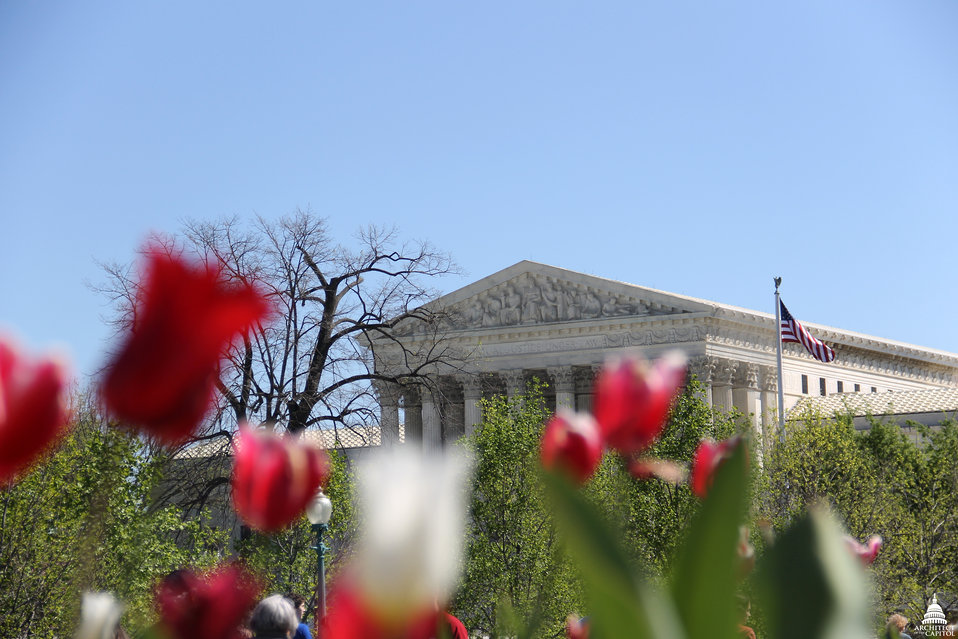 U.S. Supreme Court in Spring