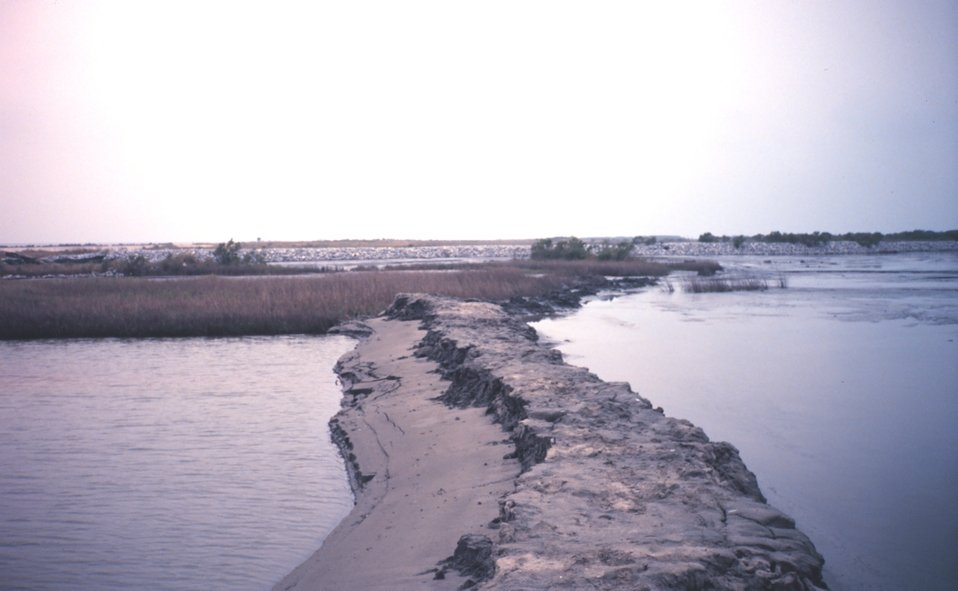 The Greenhill/East Timbalier dredged material inside of temporary levee to right  -- dredged material dries to create new land.