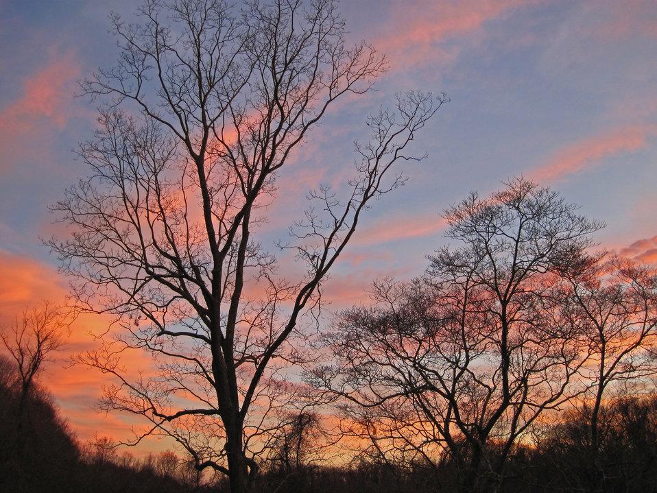 Sunset at Salt Meadow