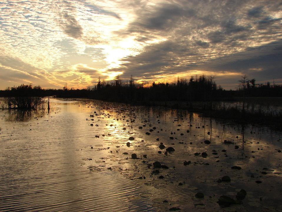 Okefenokee Sunset2