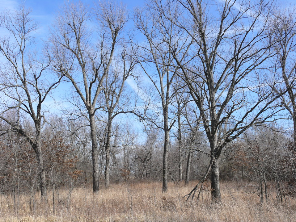 Acquired Acreage in Cherokee County, Kansas