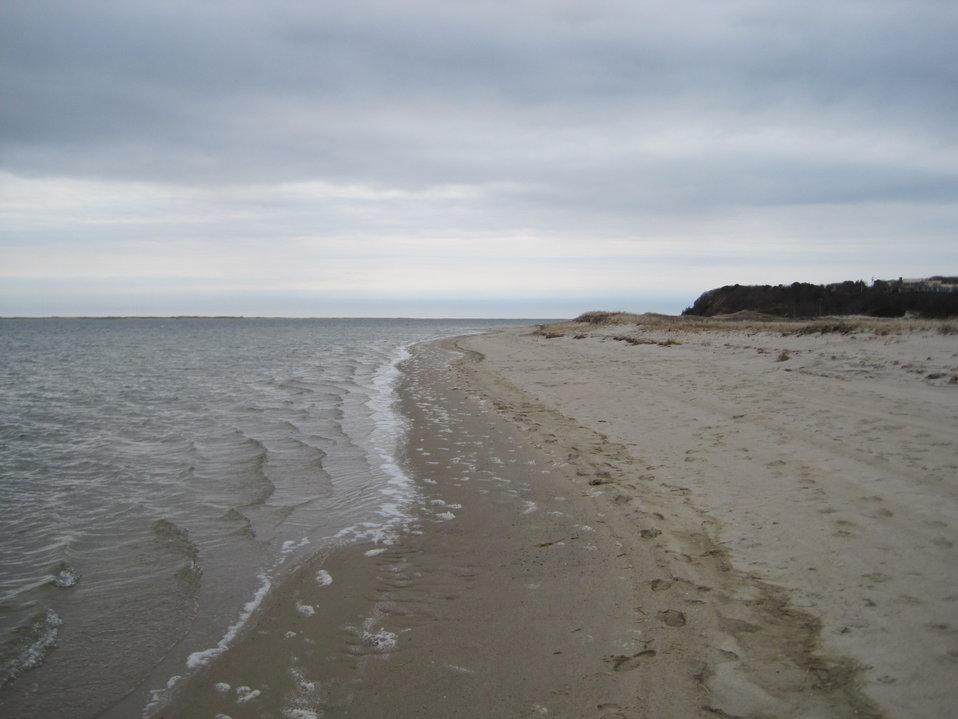 Shoreline at Monomoy