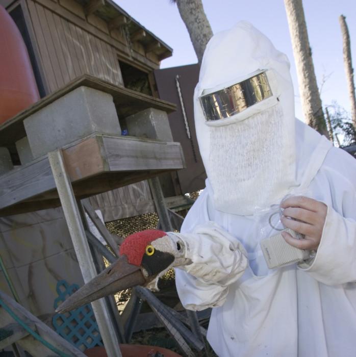 Costumed Human