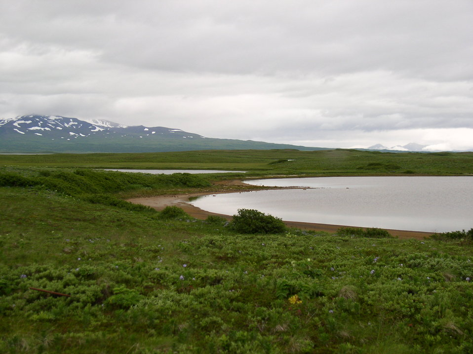 tundra and lake
