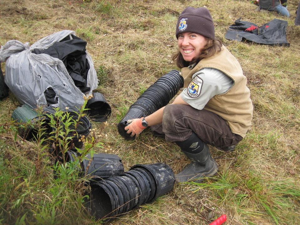 Planting at Rachel Carson National Wildlife Refuge