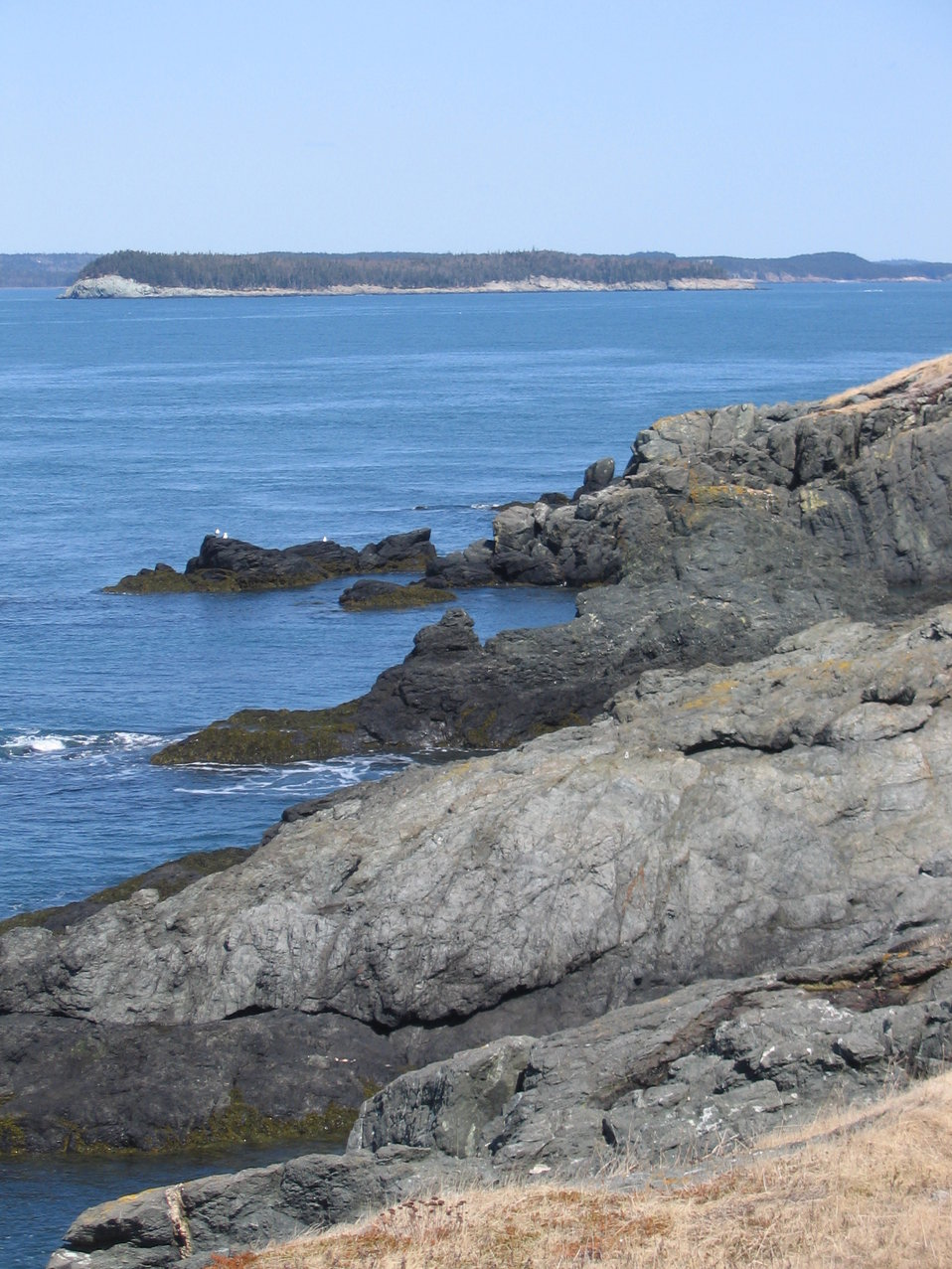 Maine Coastal Islands NWR
