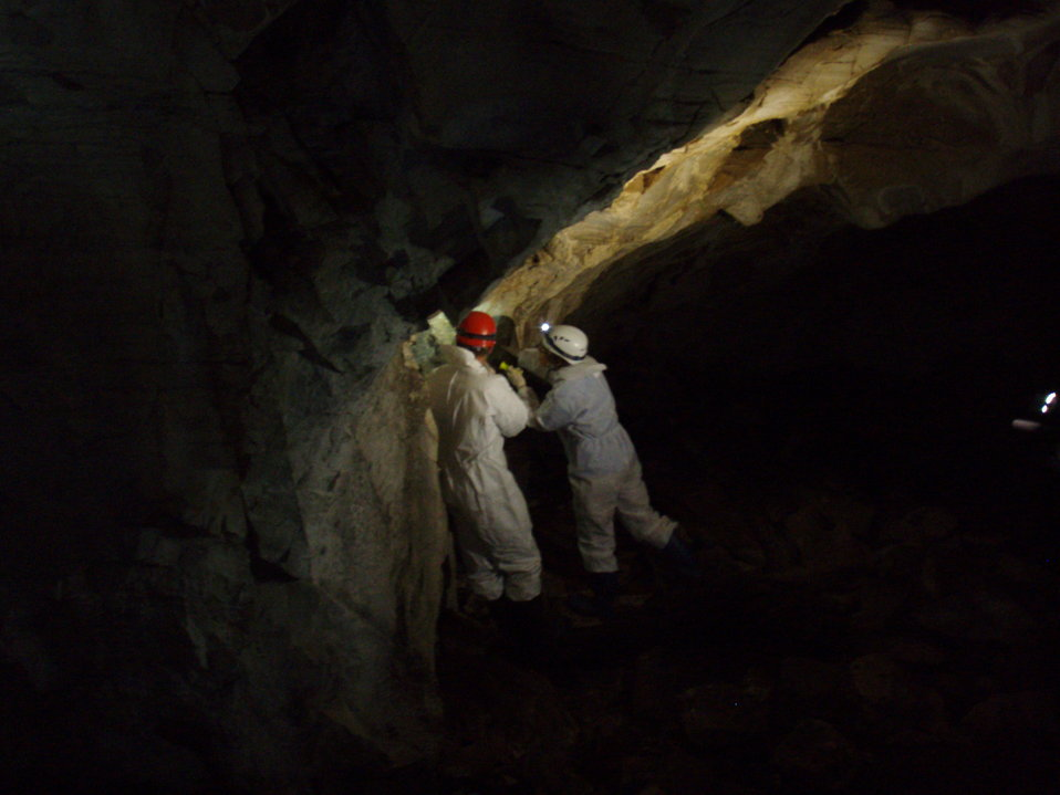 Researchers look for bats in Aeolus Cave
