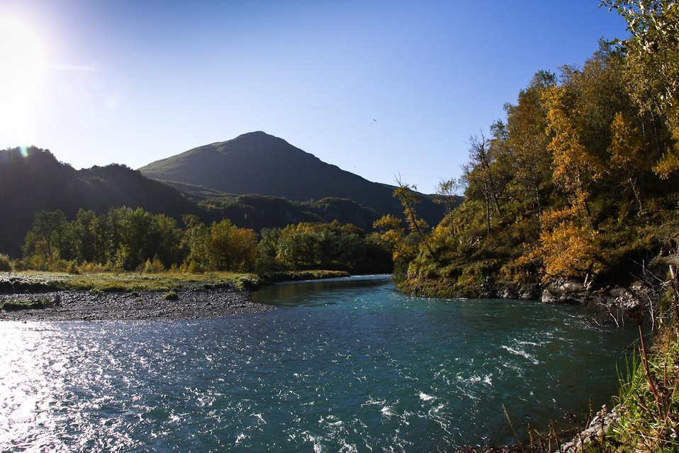 Uganik River in fall