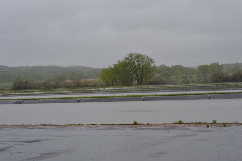 Hatching ponds