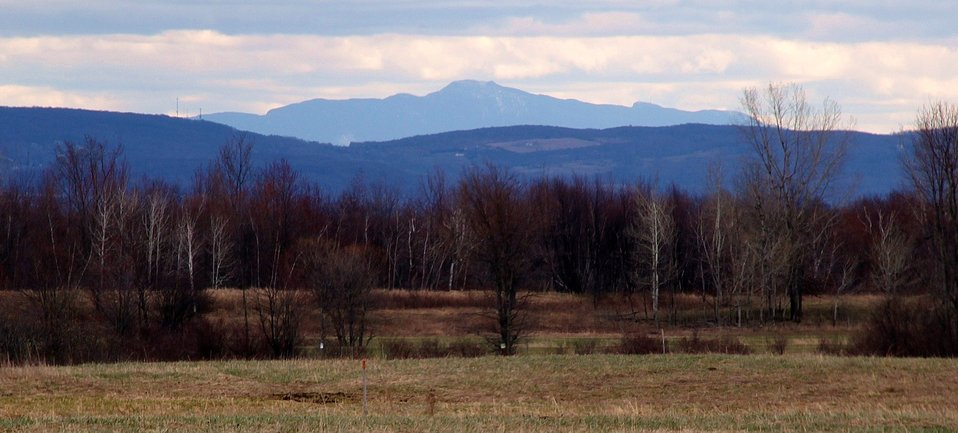 Mount Mansfield from Missisquoi National Wildlife Refuge