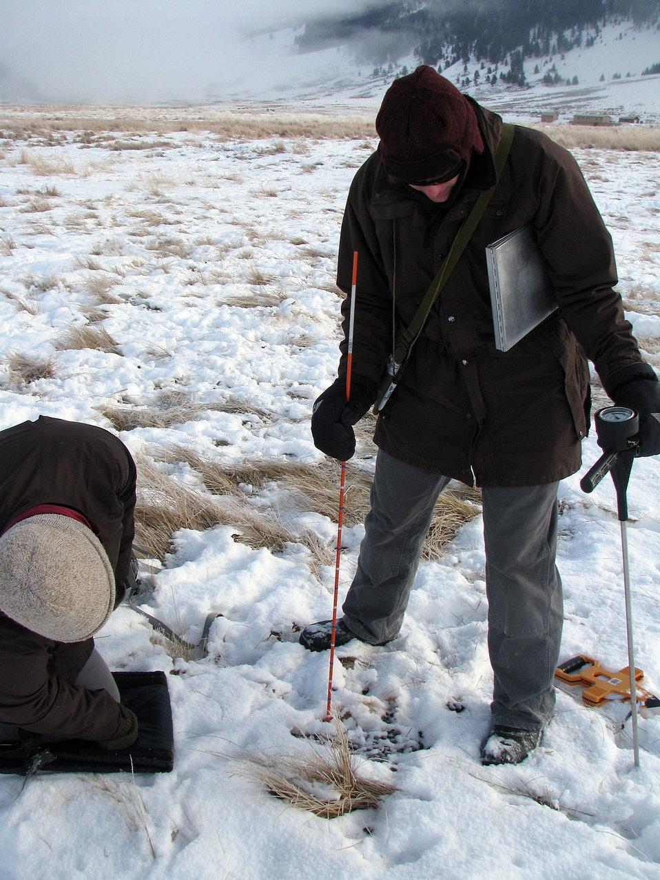 Environmental Sampling at the National Elk Refuge