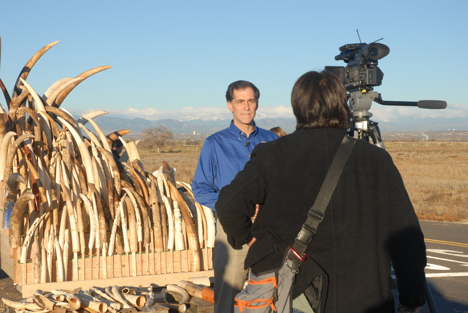 U.S. Fish and Wildlife Service Director Dan Ashe hopes this effort will raise awareness on elephant poaching and help to ensure the survival of this iconic species.