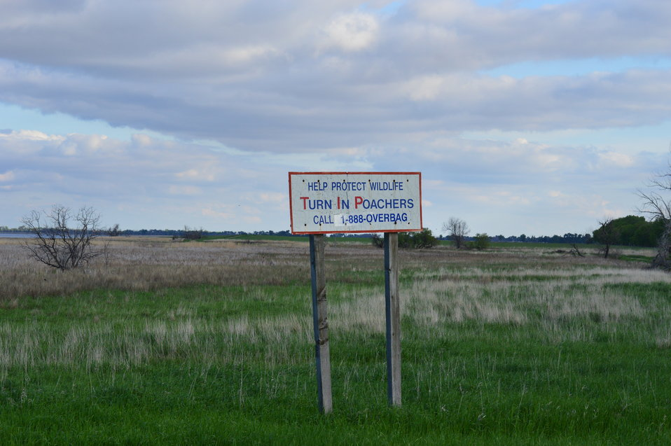 'Help Protect Wildlife' sign