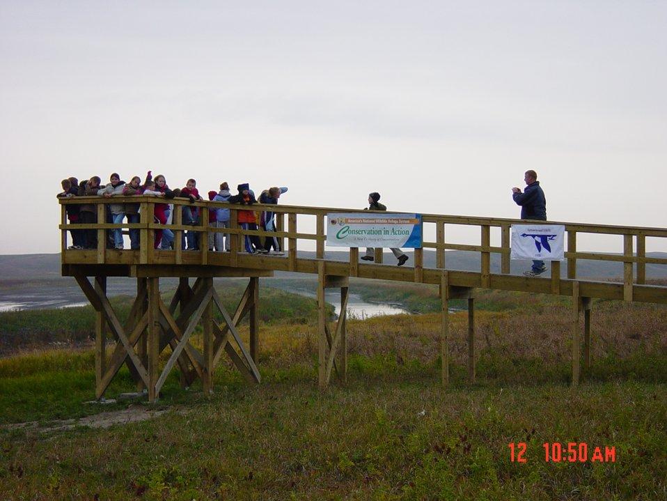 Wetlands Observation Deck