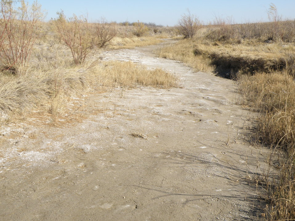 Dry creek bed, Quivira Refuge