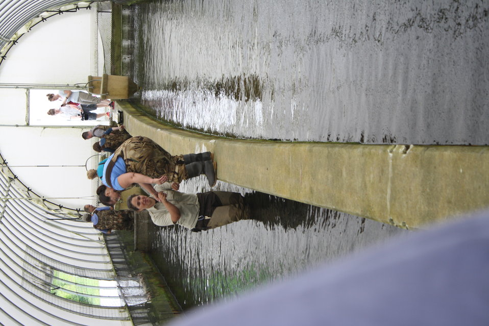 Nashua National Fish Hatchery welcomes regional office employees
