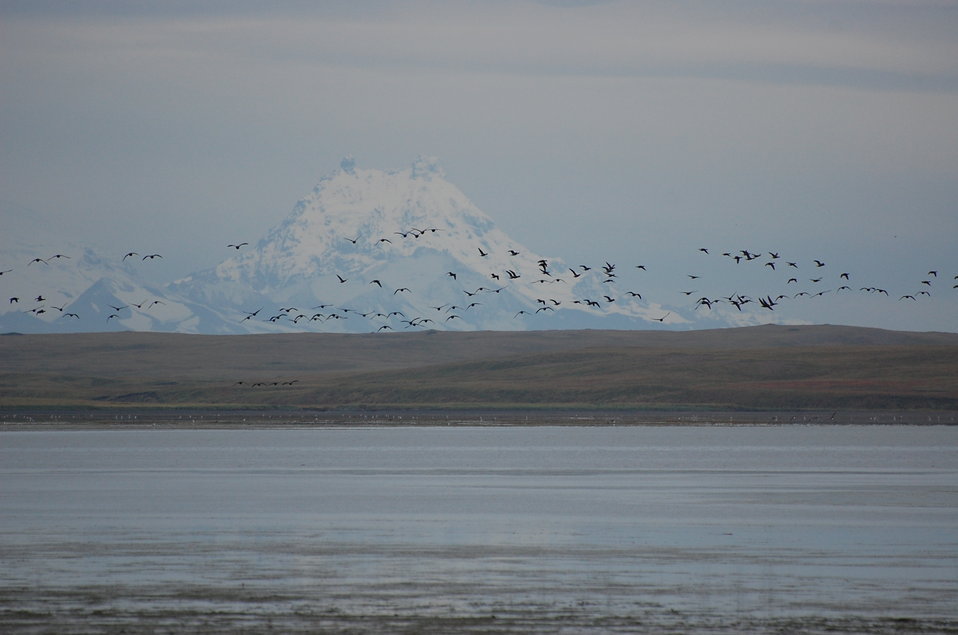 Brant and Isanotski Volcano