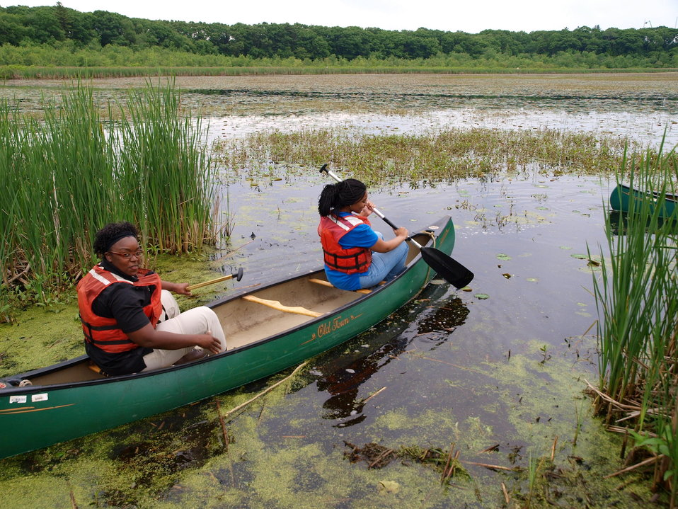 Canoeing for Waterchestnuts