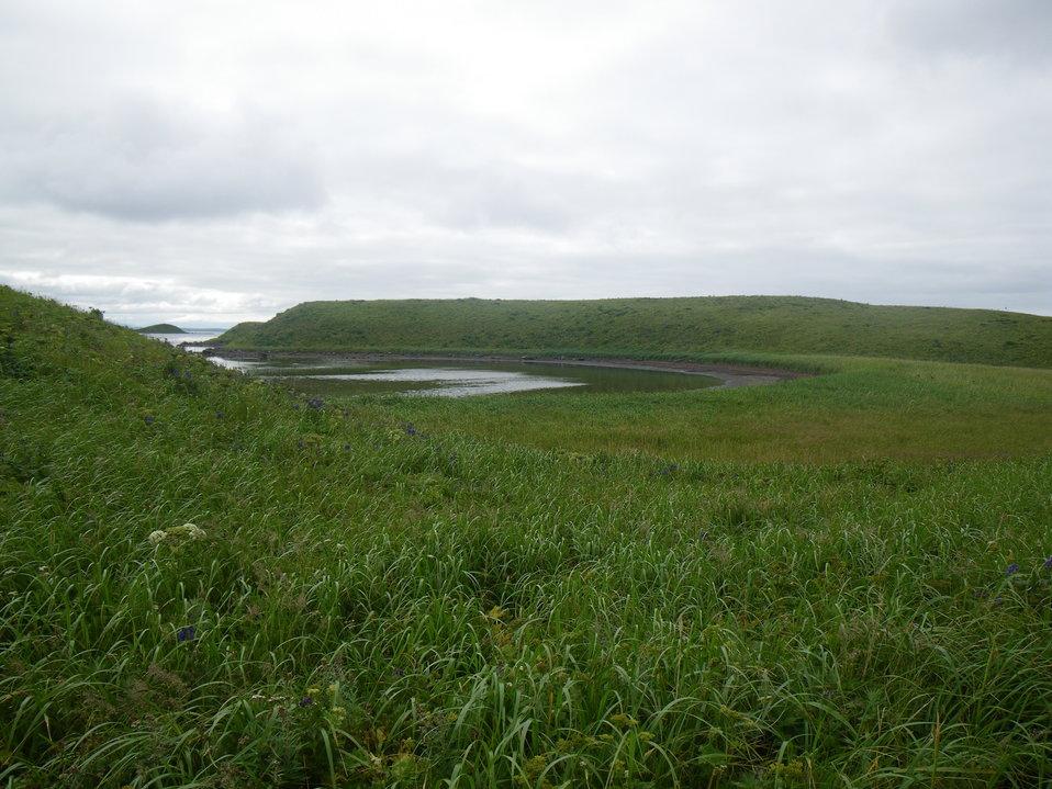 Island in Izembek Lagoon