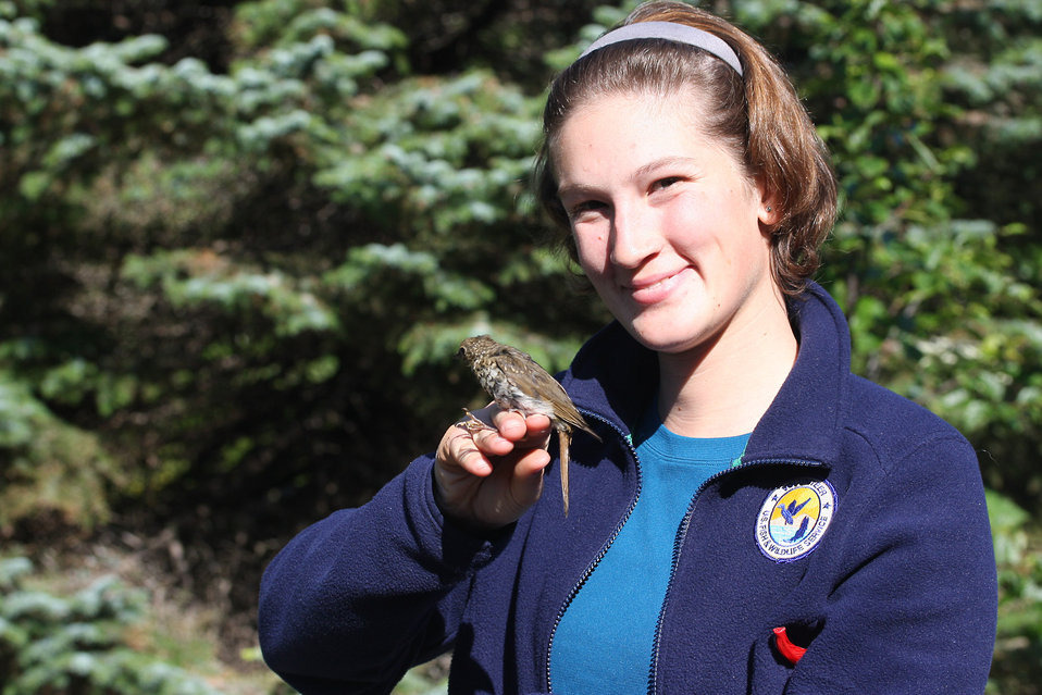 Avian volunteer Katie Studholme with a banded landbird