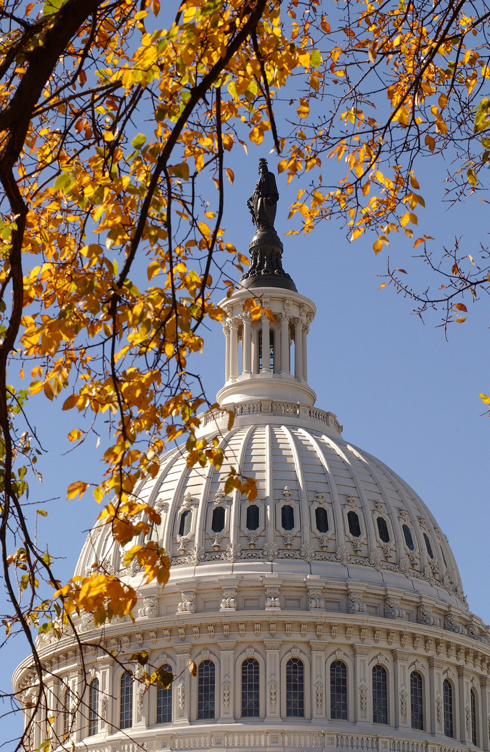 East Front view of upper section of Capitol dome with fall foliage