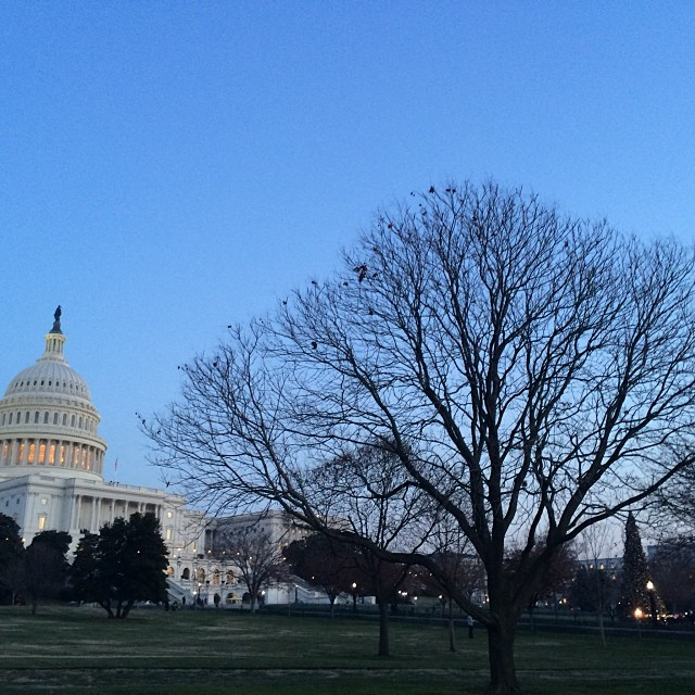 Beautiful evening in #DC for lighting Capitol Christmas tree.