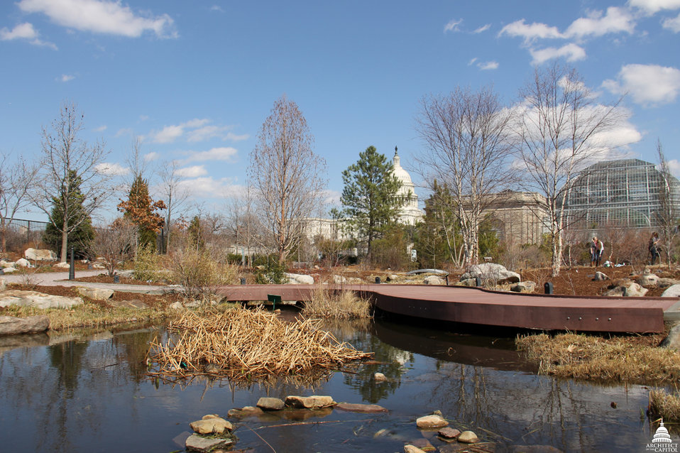 National Garden at USBG on last day of winter 2013