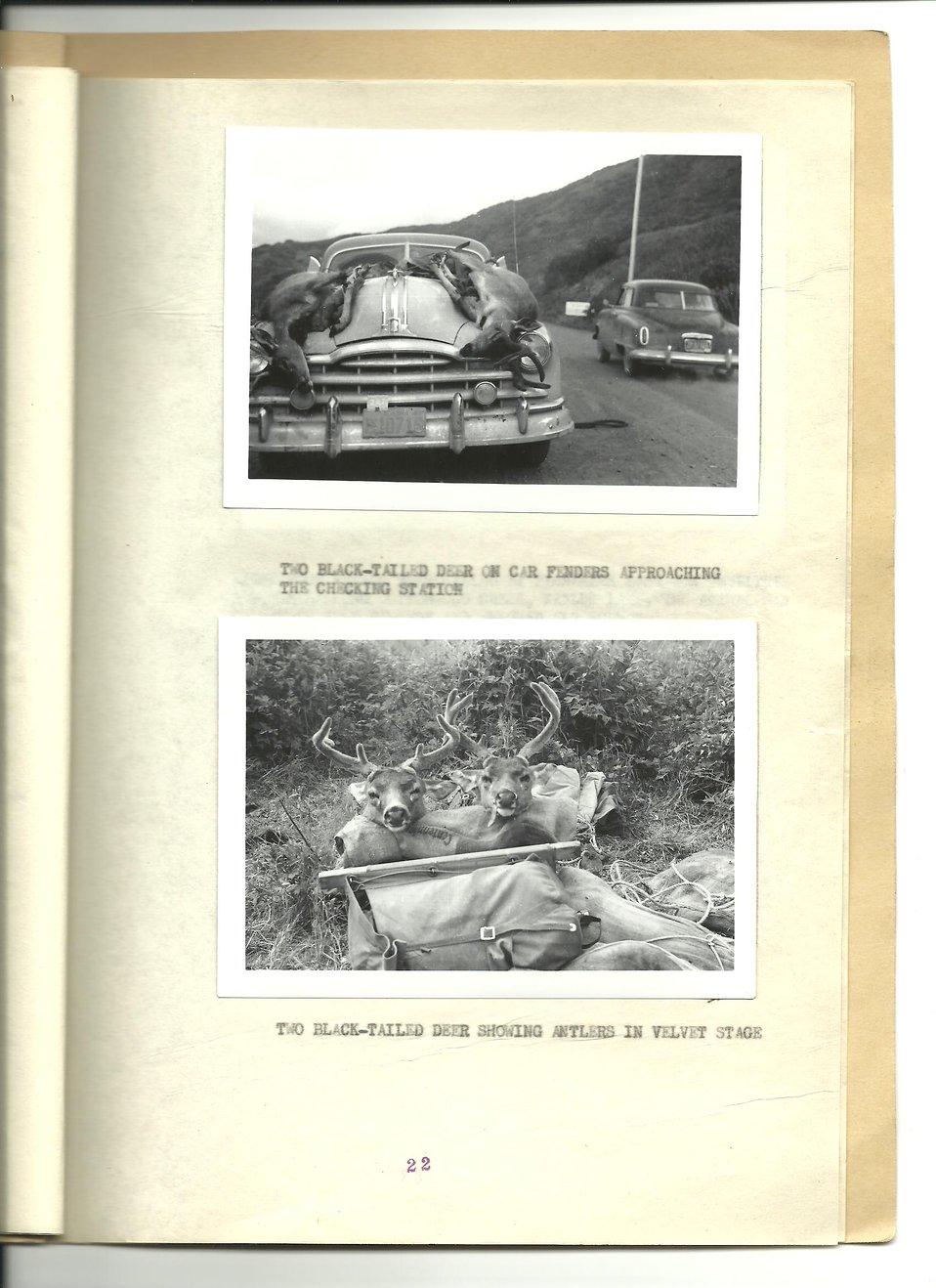 (1953) Deer Hunts