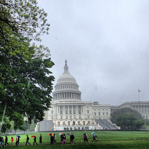 A rain soaked afternoon greets visitors to the Capitol Grounds. #dc