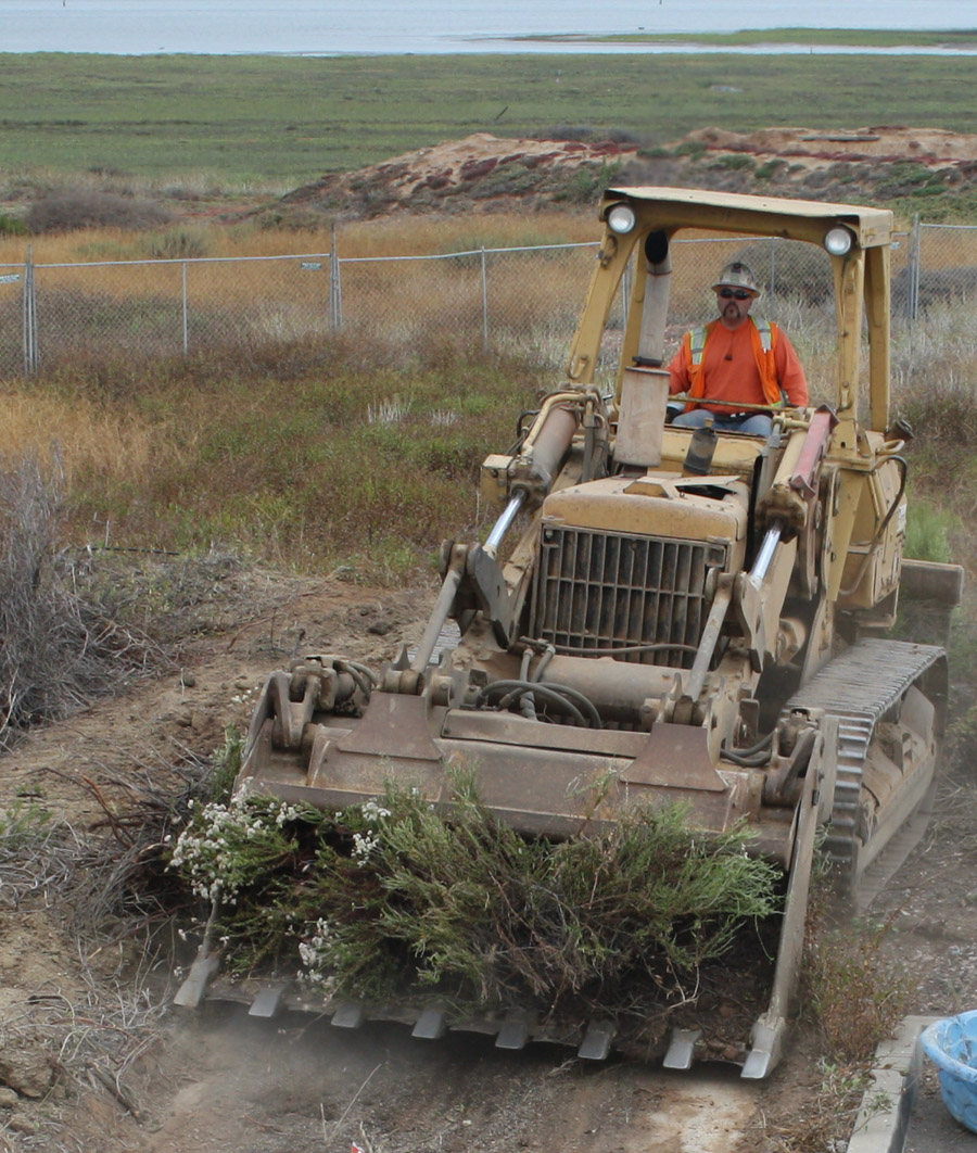 Clearing the way on the San Diego National Wildlife Refuge