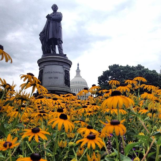 Garfield monument on rainy July morning
