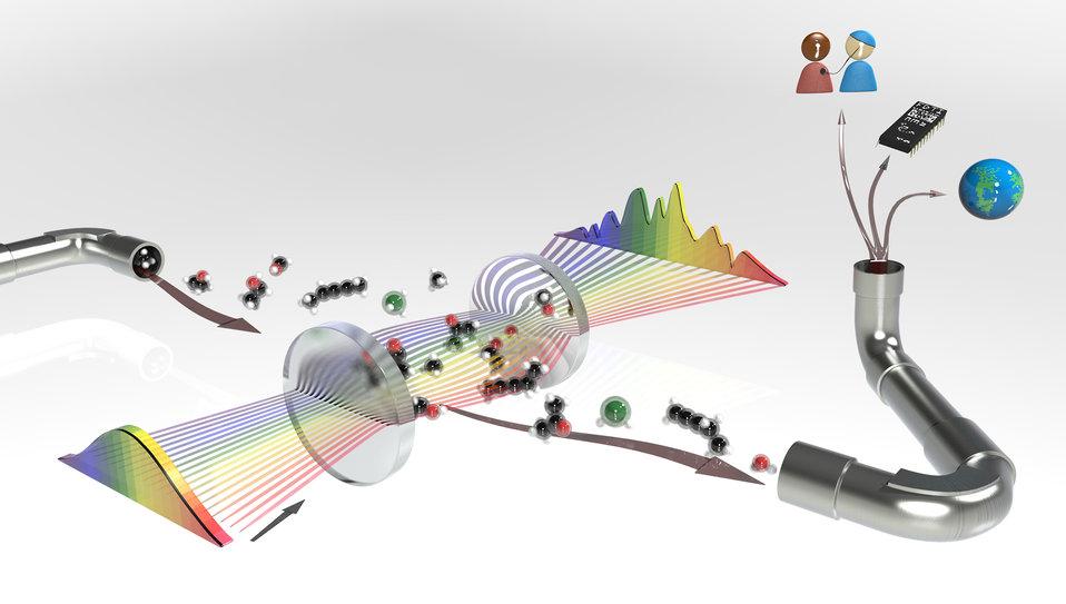 Molecular Fingerprinting