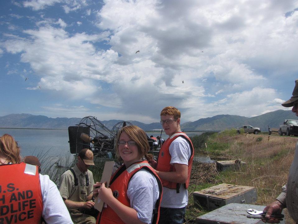 YCC crew helping with bird banding