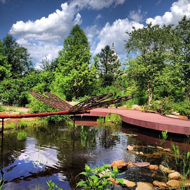National Gardent at US Botanic Garden